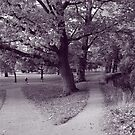 Autumn in the Park - Purple Toned BW by Artberry