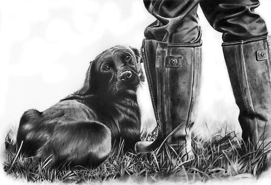 Gun Dog by Peter Williams