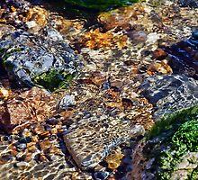 Colours Of The River 2 ~ Lyme Regis by Susie Peek