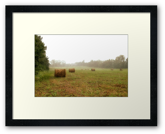 Bales, Here and There by © Bob Hall