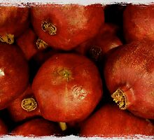 Pomegrantes by Barbara Wyeth