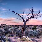 Sunrise at White Pocket, AZ by rjcolby