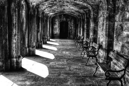 Shady Seating by Lee  Gill