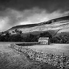 The Dales in mono by Paul Davis