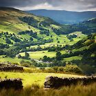 The Yorkshire Dales by Paul Davis