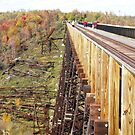 Kinzua Trestle 3 ~ Skywalk & Debris by artwhiz47
