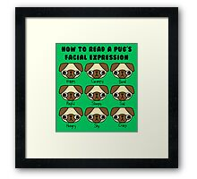 The many facial expressions of a pug Framed Print