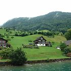 Houses on a mountain slope near Lake Lucerne by ashishagarwal74