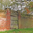 Gate in Wall by Sue Robinson