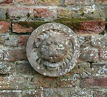 Lion Plaque on Wall by Sue Robinson