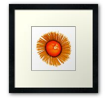 Tomato and Pasta Framed Print