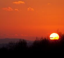 Ashdown Forest Sunset by Sue Robinson