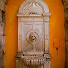 Lion's Head Marble Fountain, Split, Croatia by fg-ottico