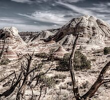 White Pocket Rock by rjcolby