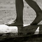 Walking Logs by Cindy-Lou Holland