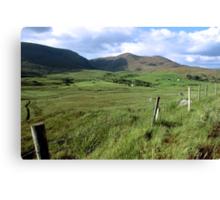 green fields of ireland Canvas Print