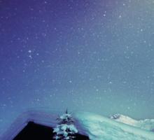 Winter Nights Sticker