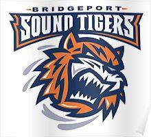 Sound Tigers Hockey Poster