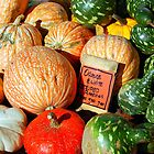 Pumpkins for Sale by Grinch/R. Pross