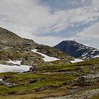 Norwegian Mountain Grandeur by Gerda Grice