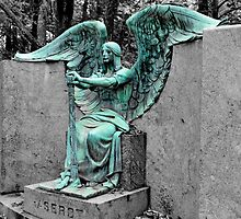 The Weeping Angel {Haserot family plot} by WonderlandGlass