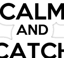Keep Calm and Catch the Snitch Sticker