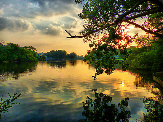 Sunset at the Park by Lilian Marshall