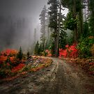 The Glory Road by Charles &amp; Patricia   Harkins ~ Picture Oregon