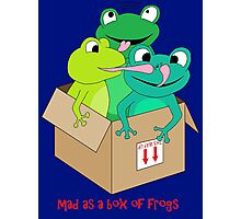 mad as a box of frogs Photographic Print