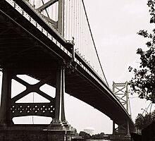 Benjamin Franklin Bridge by DAVID  SWIFT