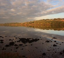 Autumn on the River Foyle by Adrian McGlynn
