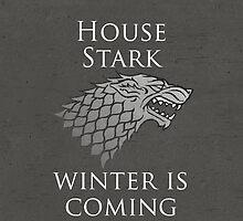 House Stark by Matthew Sheehan