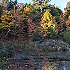 Fall Colours 1 by PhotosByHealy