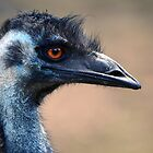 Emu by gmws