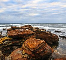 Collaroy Headland NSW by Doug Cliff