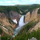Lower Yellowstone Falls - Yellowstone National Park, Wyoming by Brian Harig