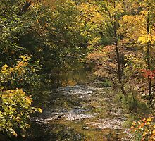 Kansas Flint Hill's Stream in the Fall by Galen Obermeyer
