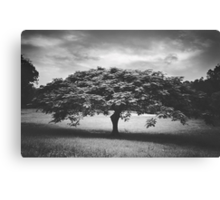 The Mood Was Set For The Night Canvas Print