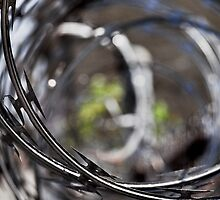 razor wire by Phillip M. Burrow