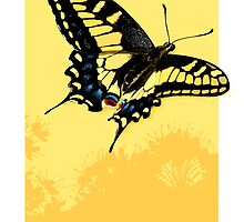 Swallowtail Butterfly by Julia  Barber