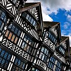028 Chester Architecture by George Standen