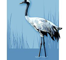 Crane by Julia  Barber
