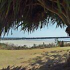 Yamba - NSW. by Liz Worth