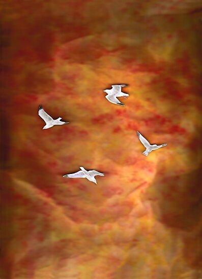 Treegulls by Mui-Ling Teh