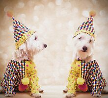 Circus Clown Dogs by Edward Fielding