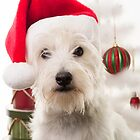 Christmas Dog by Edward Fielding