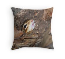 Chippie - emerging from burrow... Throw Pillow