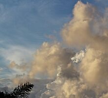 I look at clouds from both sides now by Greta van der Rol