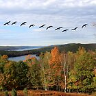 Autumn Intensity at Quabbin Reservoir by SummerJade