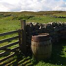 Gate and Barrel by kalaryder